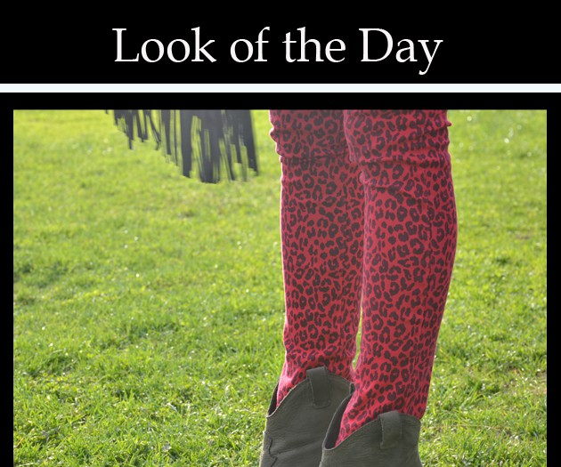 animal_print_look_of_the_day_fashion_style_blog