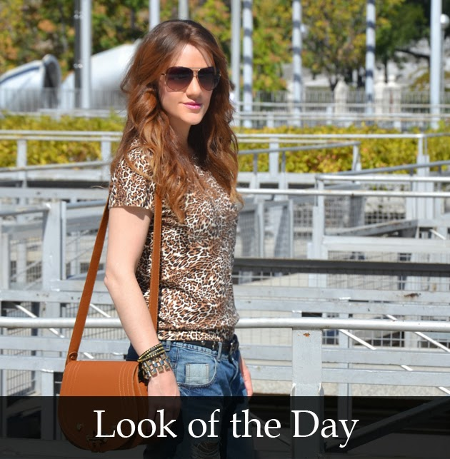 Look-of-the-day-animal-print-best-fashion-blogger-spain