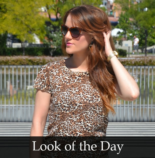 LOOK-OF-THE-DAY-ANIMAL-PRINT-CHIC-STYLE-BLOG-DE-MODA